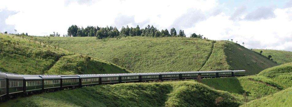 african train safari